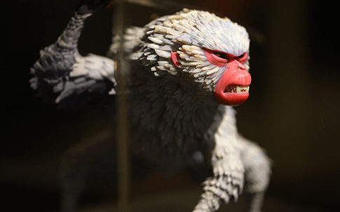 "Monkey from ""Kubo and the Two Strings,"" LAIKA's fourth feature film."